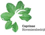 Caprinae_logo